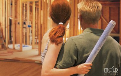 What's In Your Dream Home: How Mold Can Affect All Property Investments